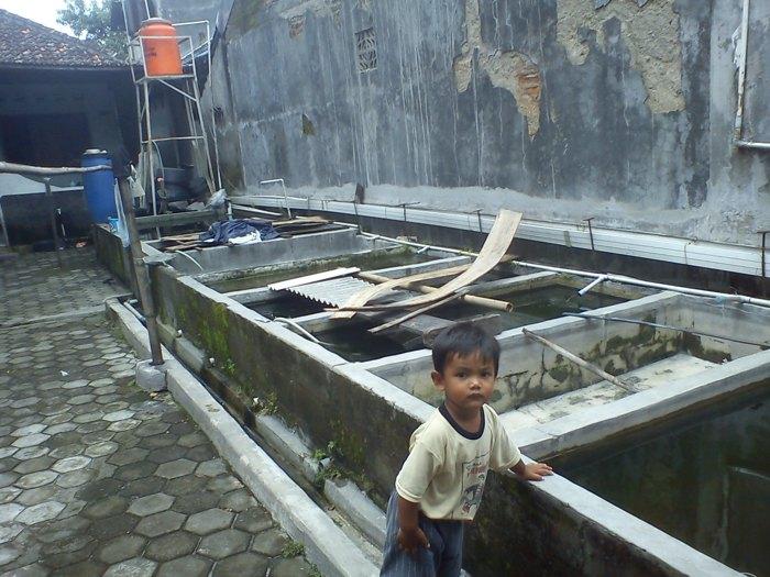 penampungan-ikan